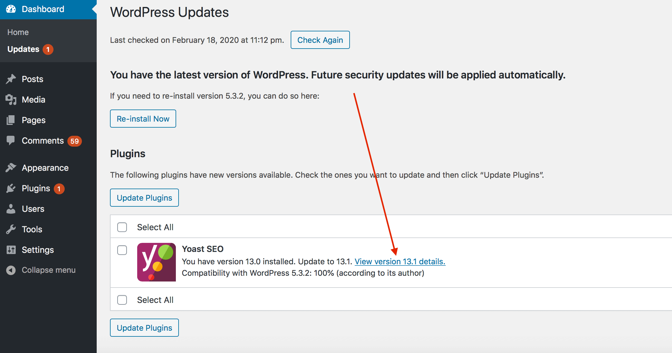 How to view the details of a wordpress plugin version